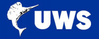 UWS nerf Bars
